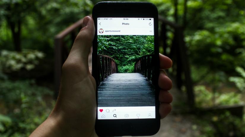contenido funciona mejor en Instagram